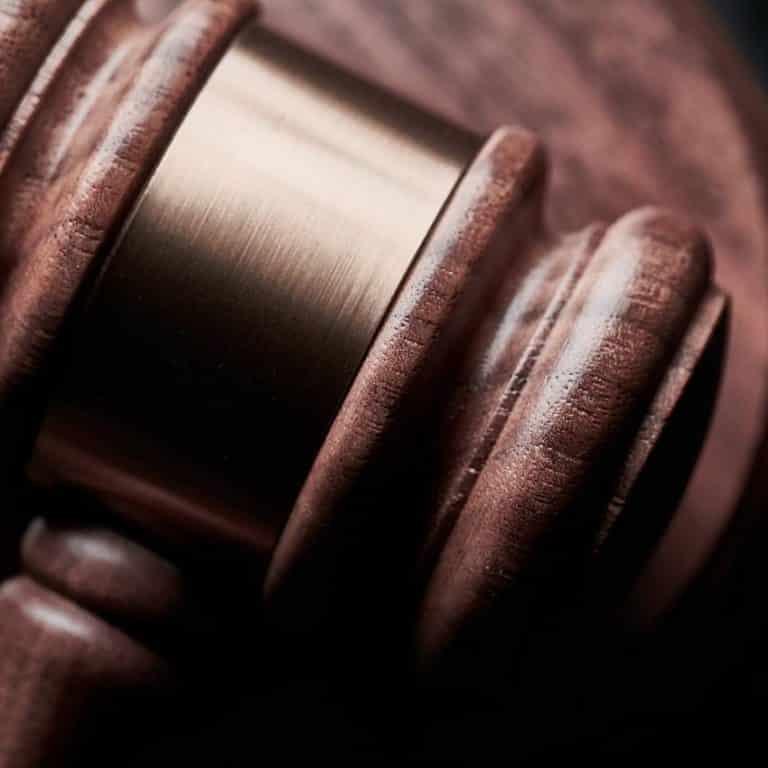 Dansk Varmblod lægger i kakkelovnen til et auktionsrigt år