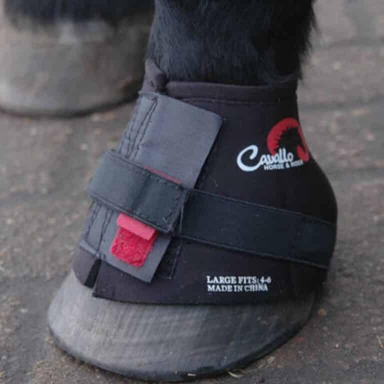 Grå boots til heste