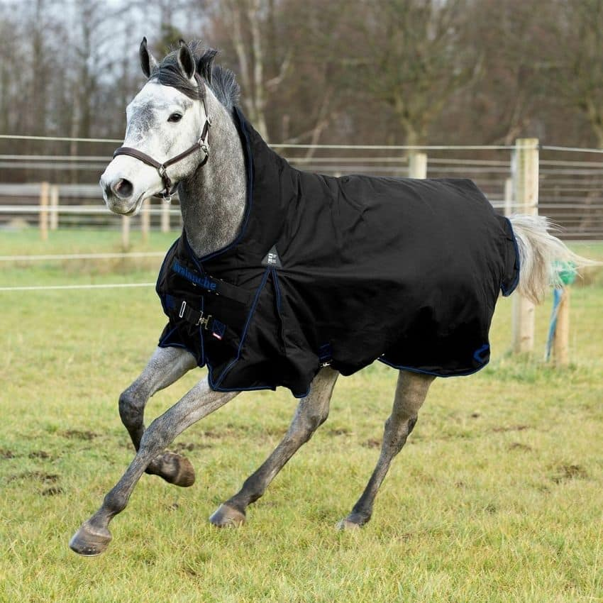 Sort hestedækken