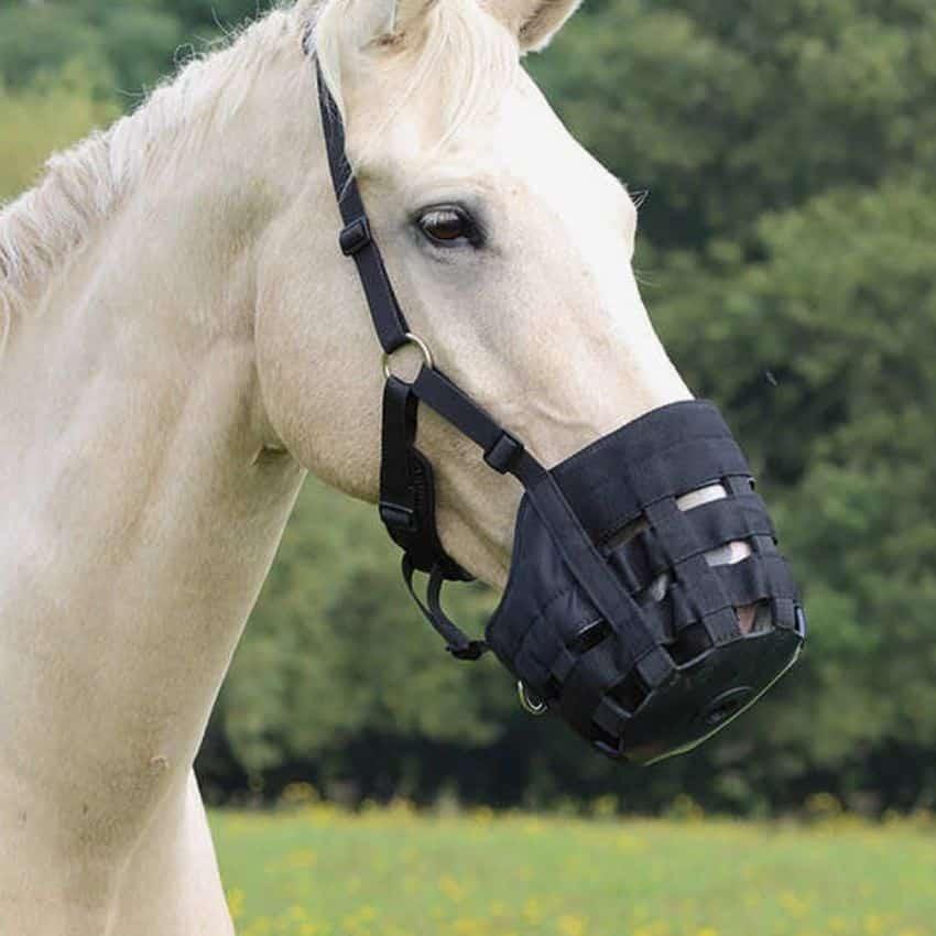 Mørkegrå mundkurv til hest