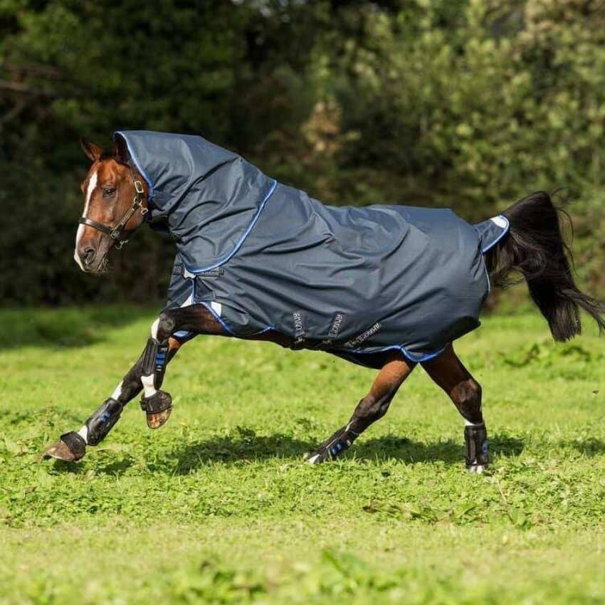 Navy blue regndækken på hest i aktion