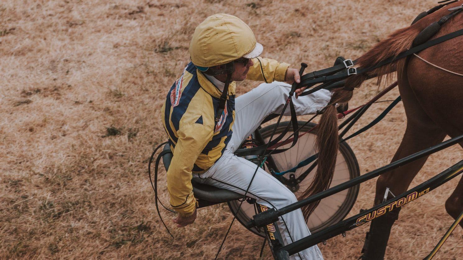 Ridepisken bruges som et ekstra stykke udstyr til at styre ens hest.