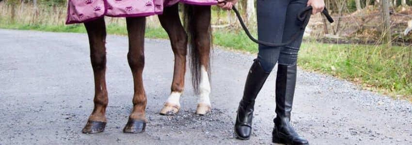 Sorte ridestøvler til børn